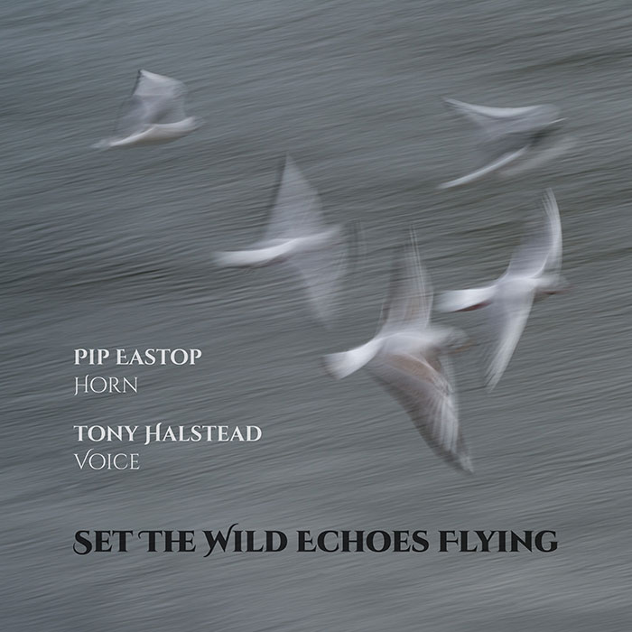 Set The Wild Echoes Flying